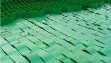HDPE Geocell Van uitstekende kwaliteit van de Bescherming van de helling