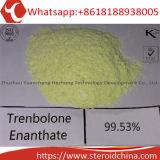 Qualitäts-rohes Steroid pulverisiert Trenbolone Enanthate CAS 10161-33-8