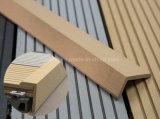 Le Decking de WPC embarque la qualité superbe et pratiquement exempt d'entretien creux/solides