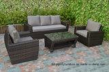 Weidenstuhl 4PC mit Kissen-im Freiensofa-Sets mit Kaffeetische (TG-218)