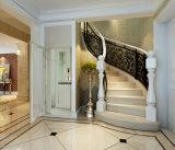 Champagne 황금 가정 전송자 엘리베이터