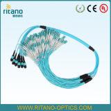 Cabo ótico do tronco da fibra de MPO-MPO milímetro Om4 que monta Patchcords