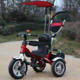 Giro del bambino sul triciclo del passeggiatore del giocattolo