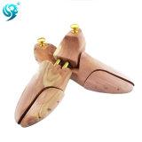 Progettare il cedro per il cliente che rosso il legno fa l'albero del pattino di promozione