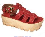Pattini piani dei sandali del gladiatore del cuneo della piattaforma per le signore delle donne