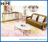 Современная мебель металлическая кофейный столик со стеклом (HC2347)