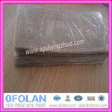 Rete metallica tessuta argento puro del filtrante