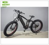 48V 350W Middle Motor Electric Bike with Conceited Car