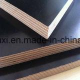 A madeira compensada marinha do núcleo da folhosa/a madeira compensada/película Shuttering enfrentaram a madeira compensada para a construção