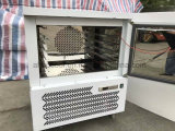 생과자와 빵집을%s 5개의 팬 스테인리스 돌풍 냉장고