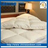 El hotel/caseros/el hospital abajo acuestan los primeros del colchón