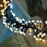 Il petardo impermeabile illumina l'indicatore luminoso leggiadramente di colore dei 400 LED per la cerimonia nuziale, il partito Decort di festival