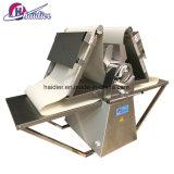 Équipement de boulangerie Croissant Making Machine automatique électrique laminoir en acier inoxydable