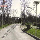 15W 3.8-4.3m 높은 태양 정원 빛 (DZ-TT-203)