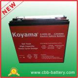 baterias do veículo eléctrico de 6-Dzm-20 12V20ah