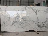 Het hoogste Marmer Statuarietto van de Binnenhuisarchitectuur van Statuario van de Luxe van de Rang Marmeren Witte