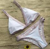 Form neuer Nylonswimwear Kontrast-Farbsatz-Bikini mit entfernbarem Auffüllen