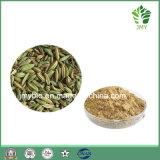 0.25%-1% Estratto naturale puro del seme di finocchio dell'anetolo, 4:1 ~20: 1