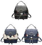Schoolbag Backpack новых женщин пакета девушок Backpack повелительниц прибытия ежедневных причинный (WDL0851)