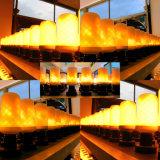 Bulbo del LED con el fuego, linterna de la luz del fuego del LED
