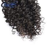 브라질 비꼬인 꼬부라진 100% 사람의 모발 직물은 Remy 머리를 묶는다