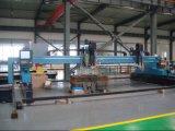 plasma do CNC do pórtico e máquina de estaca de alta velocidade resistentes da flama