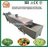 Macchina di precottura automatica di imbiancamento e delle attrezzature utilizzata nella riga Frozen di trasformazione delle verdure