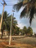 El anochecer al amanecer del alumbrado público Solar de 100W, Sistema de iluminación LED