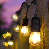 زخرفة يشعل ضوء 48 [فت] [لد] خيم خارجيّة [س14] بصيلة خيم ضوء جانبا [بروإكسي] [ليغتينغ] - [أول] يعّدّل لأنّ أحزاب, عرس, حديقة فناء