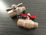 鋳造物のステンレス鋼の女性糸1PCの球弁