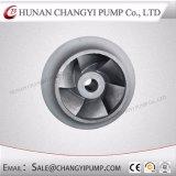 Moteur électrique de drainage marin de la Pompe centrifuge horizontale