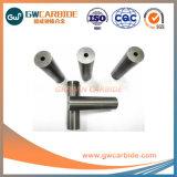 10-300mm Hartmetall-internes Steuerpolierlenkwelle-Formen