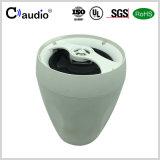 5.25 PA를 위한 피복 가장자리 광택지 콘을%s 가진 인치 2 방법 직업적인 오디오 스피커
