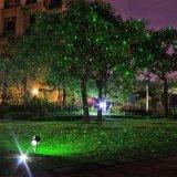 빨강과 녹색 개똥벌레 정체되는 크리스마스 정원 레이저 광