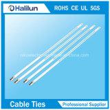 Faible prix de 304 316 l'étape de l'échelle unique en acier inoxydable attache de câble en manufacture
