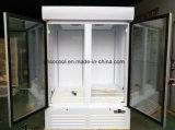 Congelatore di frigorifero commerciale della visualizzazione del congelatore del doppio portello di vetro