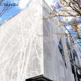Expone el comercio exterior del bastidor estructural muro cortina de aluminio Perfil de extrusión