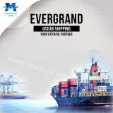 Глобальные морские грузовые перевозки грузы из Китая