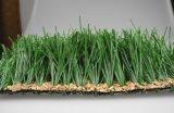 Graminage artificiel de monofilaments de haute qualité pour terrain de soccer (MB50)