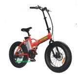 250W/500W 무브러시 자동화된 작은 폴딩 뚱뚱한 타이어 산 전기 자전거