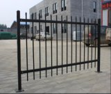 5foot*8foot galvanisé et clôture de revêtement de fer travaillé de poudre
