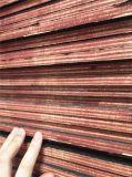 Strato Shuttering del compensato della cassaforma concreta impermeabile di WBP per costruzione