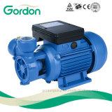 Pompe à eau périphérique de turbine de câblage cuivre de Gardon avec la turbine en laiton