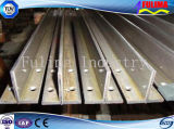 Barra d'acciaio galvanizzata Pre-Costruita di basso costo T di alta qualità (FLM-HT-038)