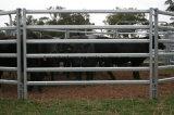 Горячая продажа металла Strong трубы оцинкованные панели крупного рогатого скота