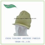 Roxo e chapéu do Knit do inverno da marinha com borda