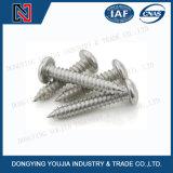 Vite di spillatura capa della vaschetta messa traversa dell'acciaio inossidabile DIN7981