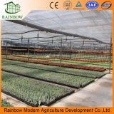 Invernaderos ambientales ambientales ecológicos en venta
