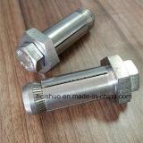 Ancres à anneaux à anneaux hexagonaux Hex Bolt M16