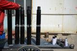 Pcpポンプまたはねじポンプまたは健康なポンプDownholeによって専門にされる反低下装置